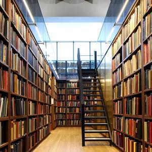 Библиотеки Борисоглебска