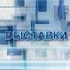 Выставки в Борисоглебске