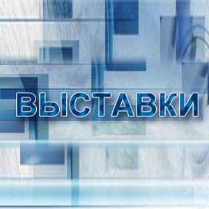 Выставки Борисоглебска